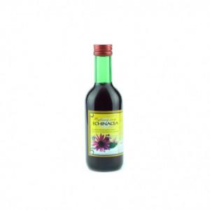 Bylinkový sirup - echinacea - Klášterní officína 250ml