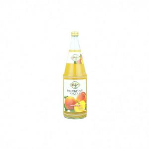Stará Dáma - broskvový nektar 1000ml